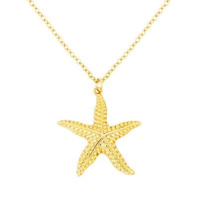 Collar Estrella de Plata Plata